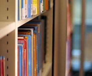 Минобразования проведет конкурс рукописей учебников для начальной школы