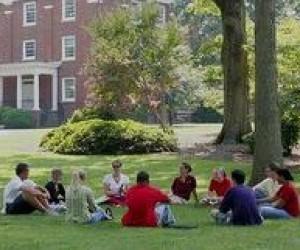 Высшее образование за рубежом: колледжи, как альтернатива университетам